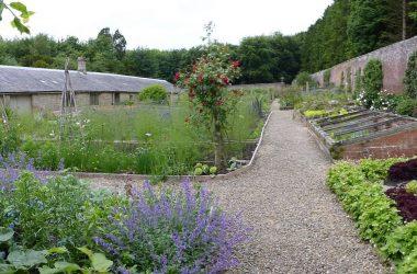 Capheaton Hall Garden