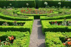 Visit open gardens in Northumberland