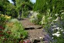 Mindrum House Open Garden