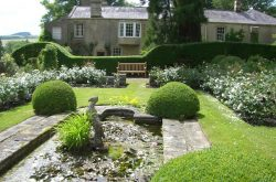 Newbrough Lodge open garden day