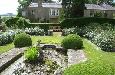 Newbrough Lodge open garden day