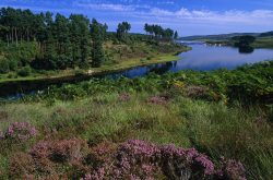 Kielder Water, Northumberland © gramme-peacock.com