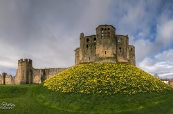 Warkworth Castle (© mikeridleyphotography.com)