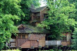 Alnwick Garden Treehouse (Lindsay Gill)