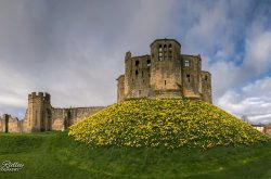 Warkworth Castle (© Mike Ridley)