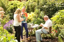 Woodlands NGS open garden day