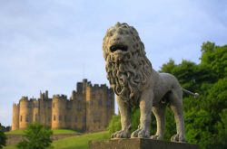 Lion Bridge & Alnwick Castle