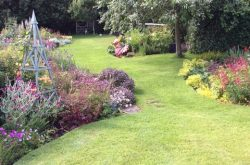 Crookham Village open gardens