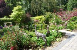 Beacon NGS open garden