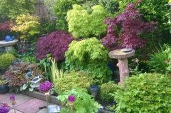 Bede Cresent NGS open garden